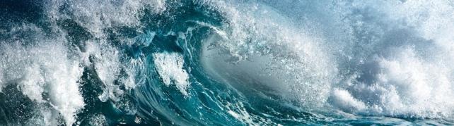 Морская тематика_245