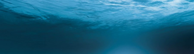Морская тематика_373