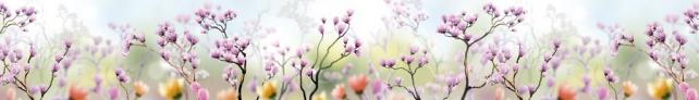 Цветы и растения_121