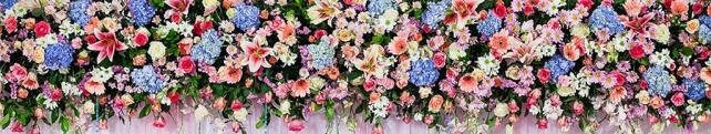 Цветы и растения_214