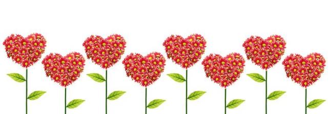 Цветы и растения_296
