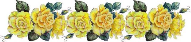 Цветы и растения_335