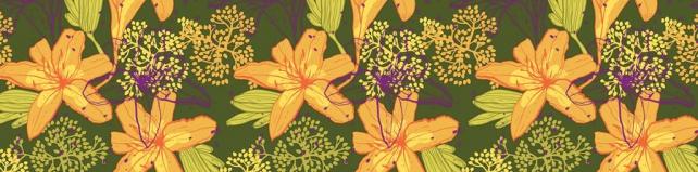 Цветы и растения_336