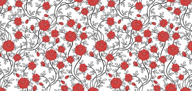 Цветы и растения_365