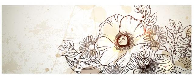 Цветы и растения_379