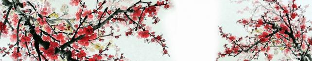 Цветы и растения_381