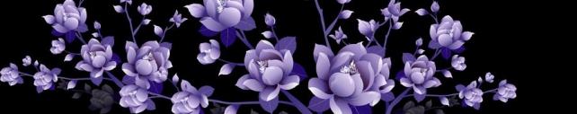 Цветы и растения_383