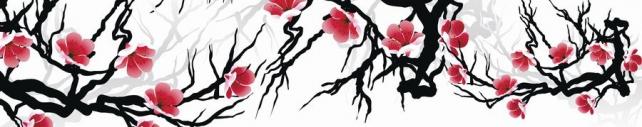 Цветы и растения_386