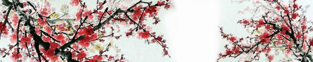 Цветы и растения_389