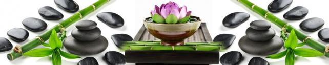 Цветы и растения_432