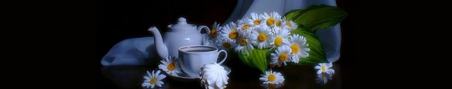 Цветы и растения_639