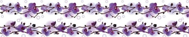 Цветы и растения_756