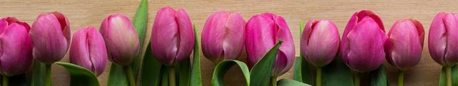 Цветы и растения_24