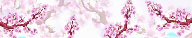Цветы и растения_316