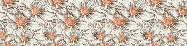 Цветы и растения_342