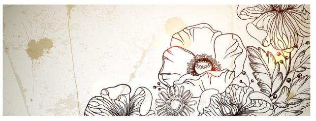Цветы и растения_377