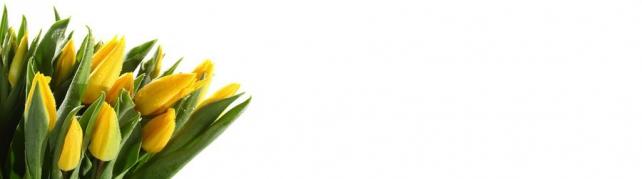 Цветы и растения_64