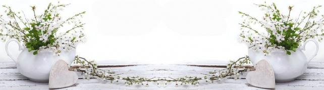 Цветы и растения_657