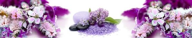 Цветы и растения_693