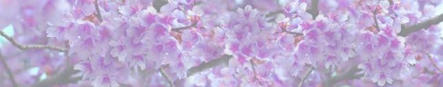Цветы и растения_720