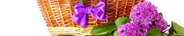 Цветы и растения_728