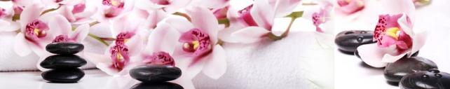 Цветы и растения_780
